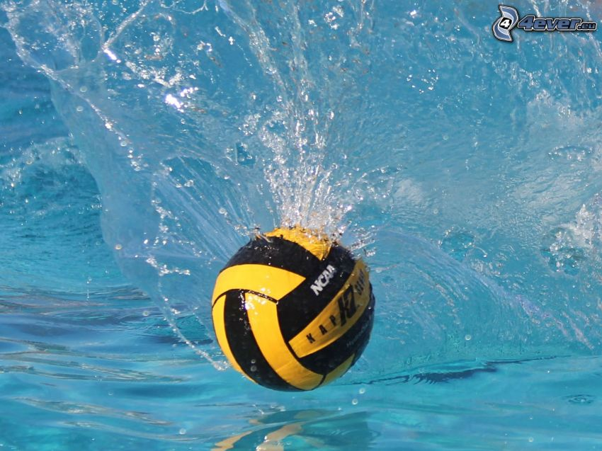 water-polo, balle, clapoter