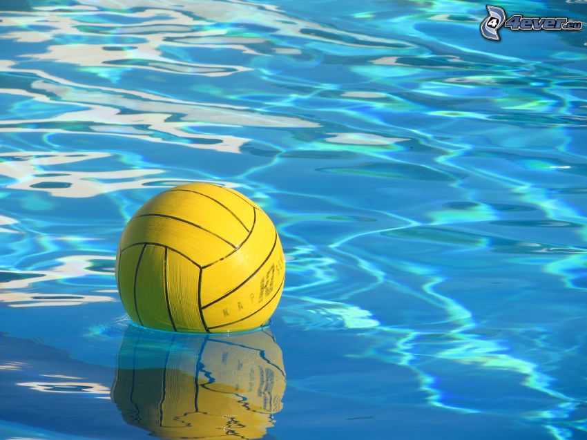 water-polo, balle, eau