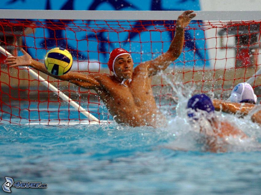 water-polo, portail, but
