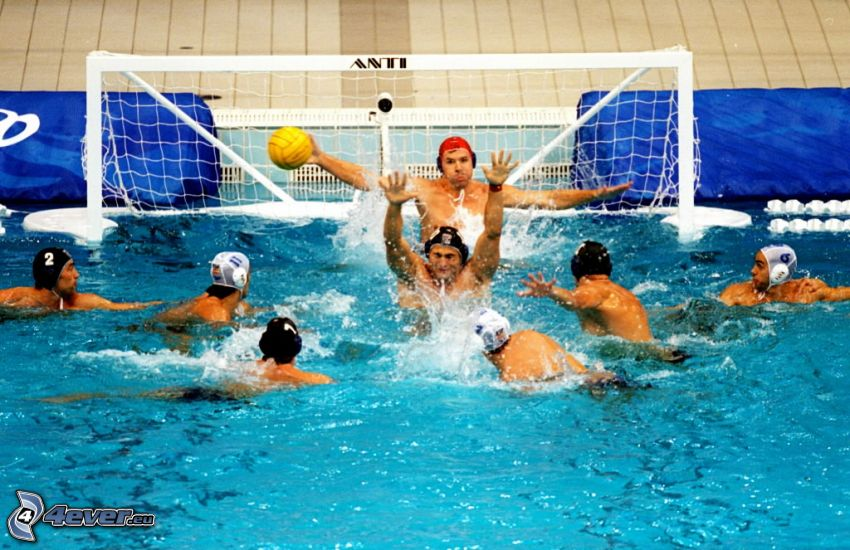 water-polo, portail