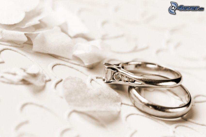 anneaux de mariage, cœurs, pétales