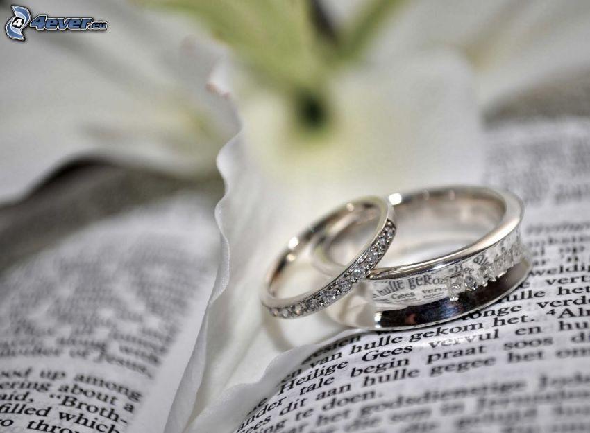anneaux de mariage, livre, text