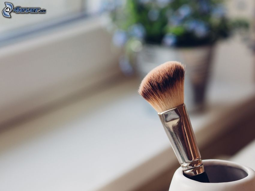 brosse, make-up