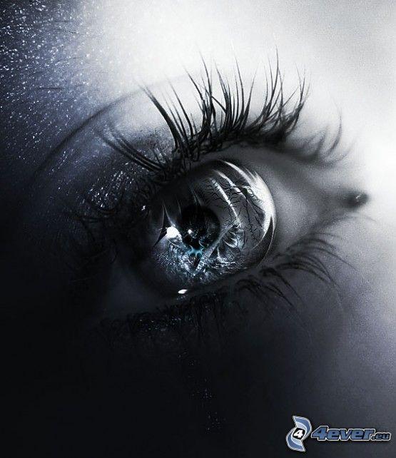 œil, reflexion, larme