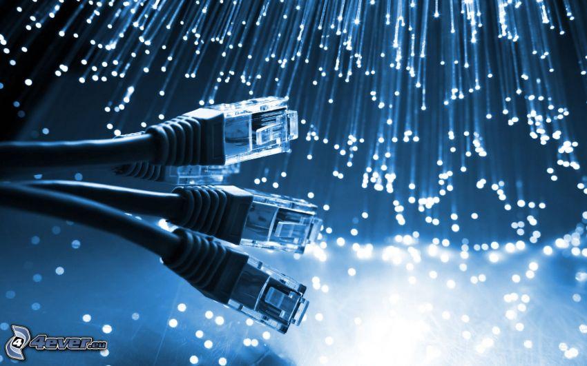 connecteur, le câble, lumières