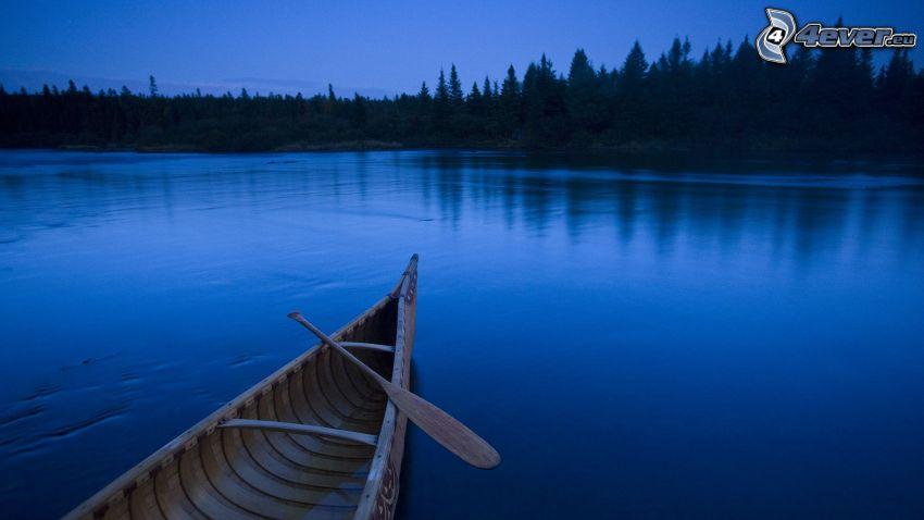 canoë, nuit, lac, silhouette d'une forêt