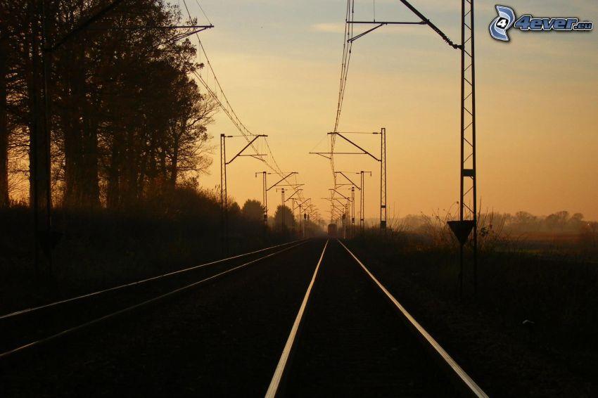 chemins de fer, rails