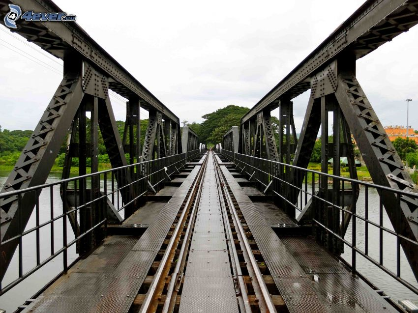 pont de chemin de fer, arbres verts