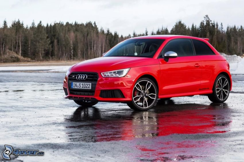 Audi S1, glace, forêt