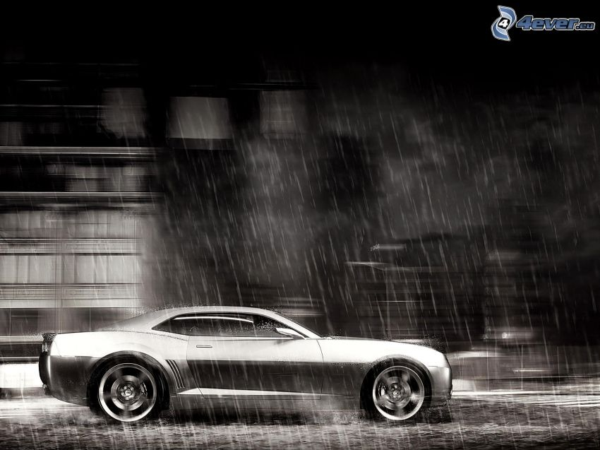 Chevrolet Camaro, pluie, noir et blanc