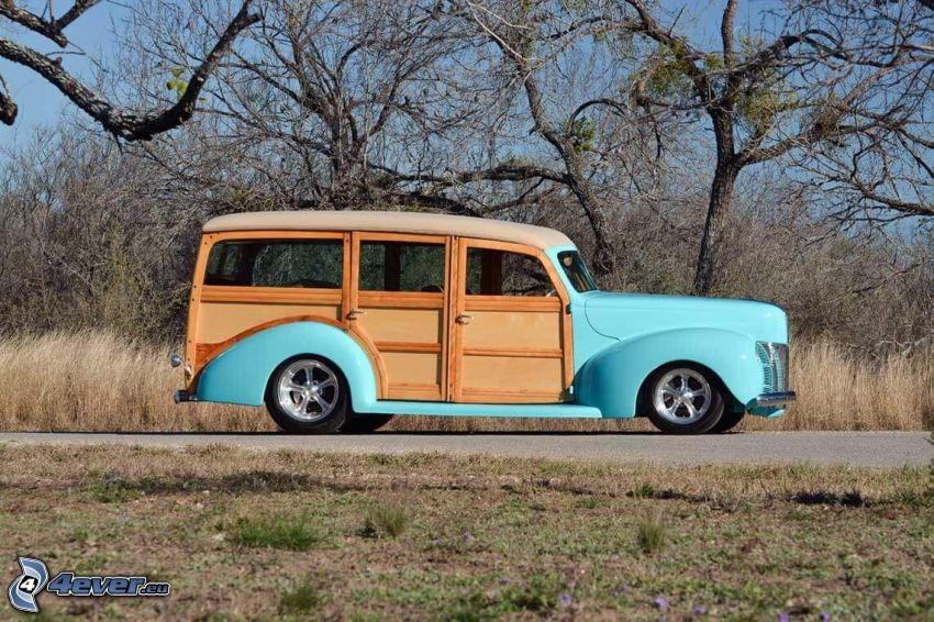 Ford Woody, automobile de collection, arbres secs