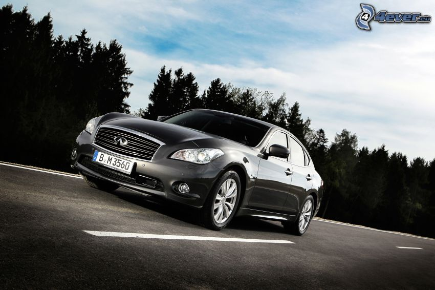 Infiniti M, forêt, route