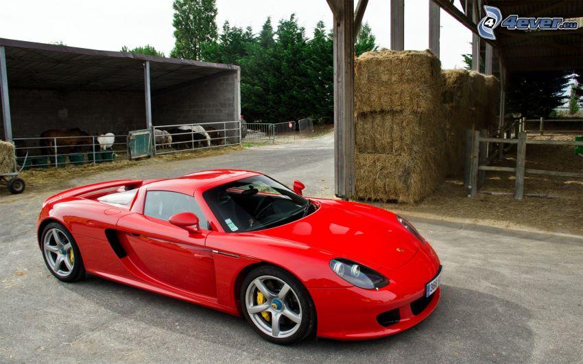 Porsche Carrera GT, étable