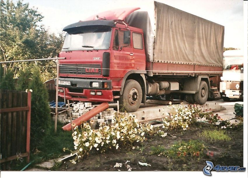 Liaz, camion, parking, fleurs