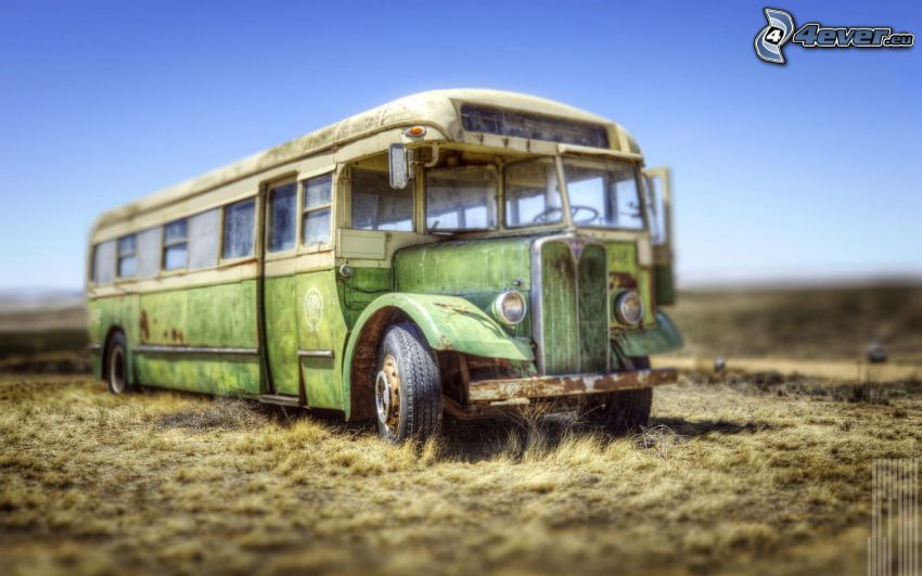Chevrolet, bus, automobile de collection, HDR