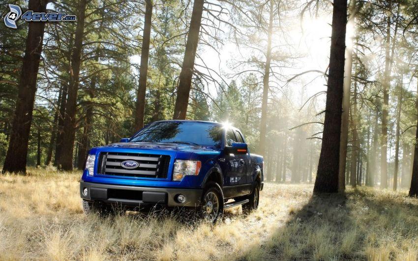 Ford, pickup truck, forêt