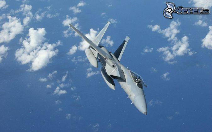Aereo Da Caccia F15 : F eagle