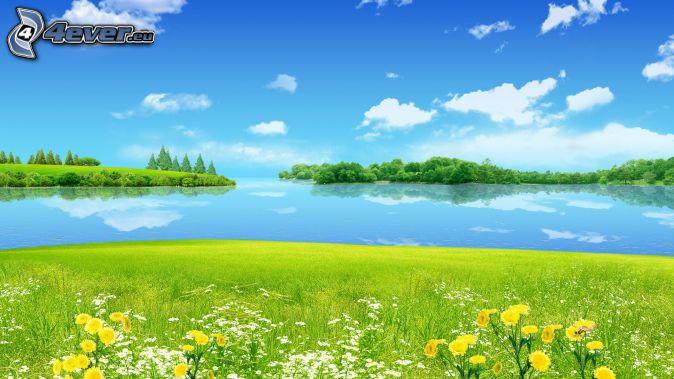 mare, isole, prato, nuvole