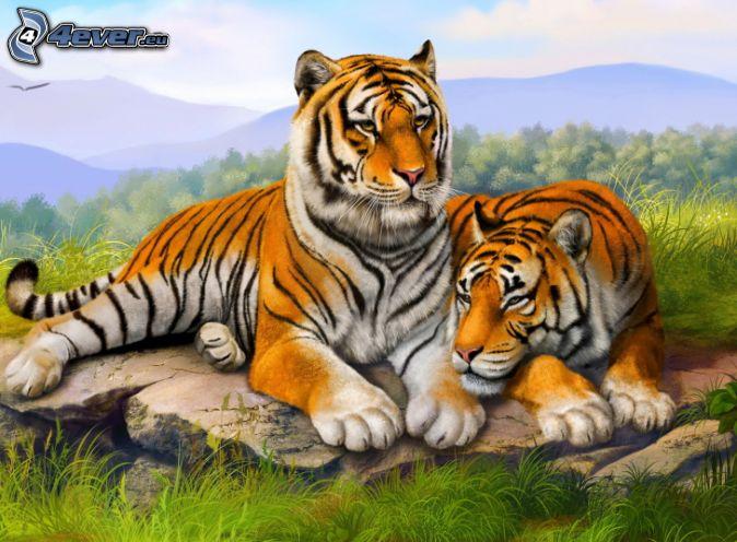 Tigri for Disegni delle tigri