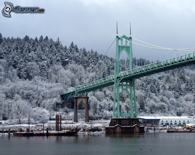 Alberi coperti di neve for Foto di ponti coperti