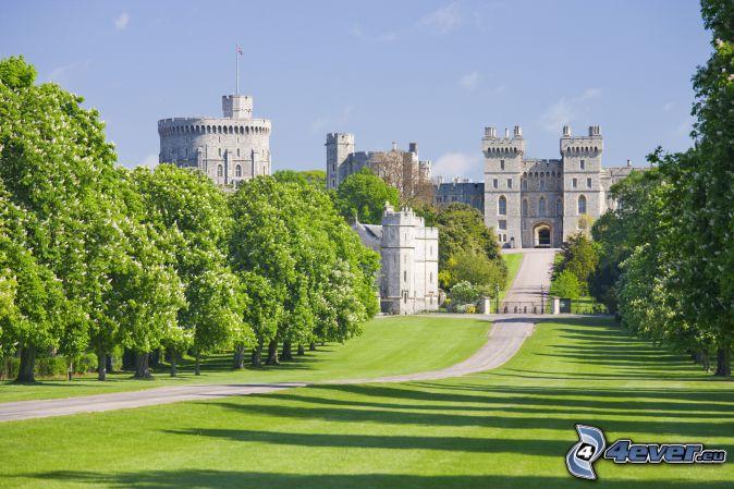 Castello di Windsor, giardino, parco, verde