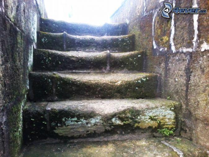 Gradinata storica - Escalones de piedra ...