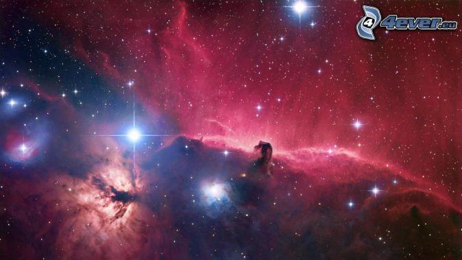 Nebulosa Testa di Cavallo, nebulose, stelle