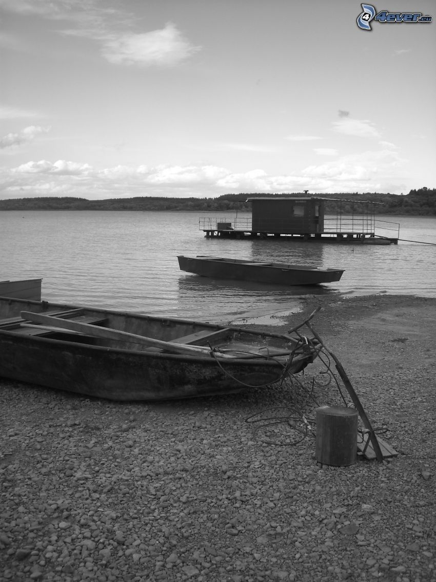 barche vicino alla riva, imbarcazioni, lago, foto in bianco e nero