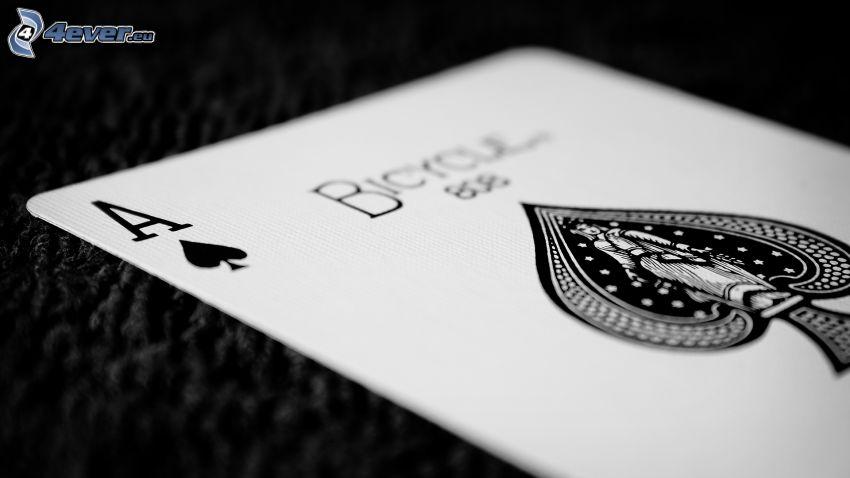 carte, asso, bianco e nero