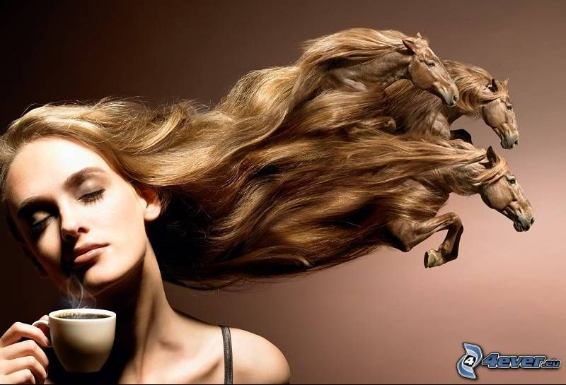 donna, cavalli, capelli, caffè