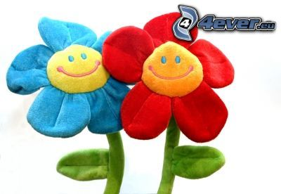 fiore, peluche, sorriso