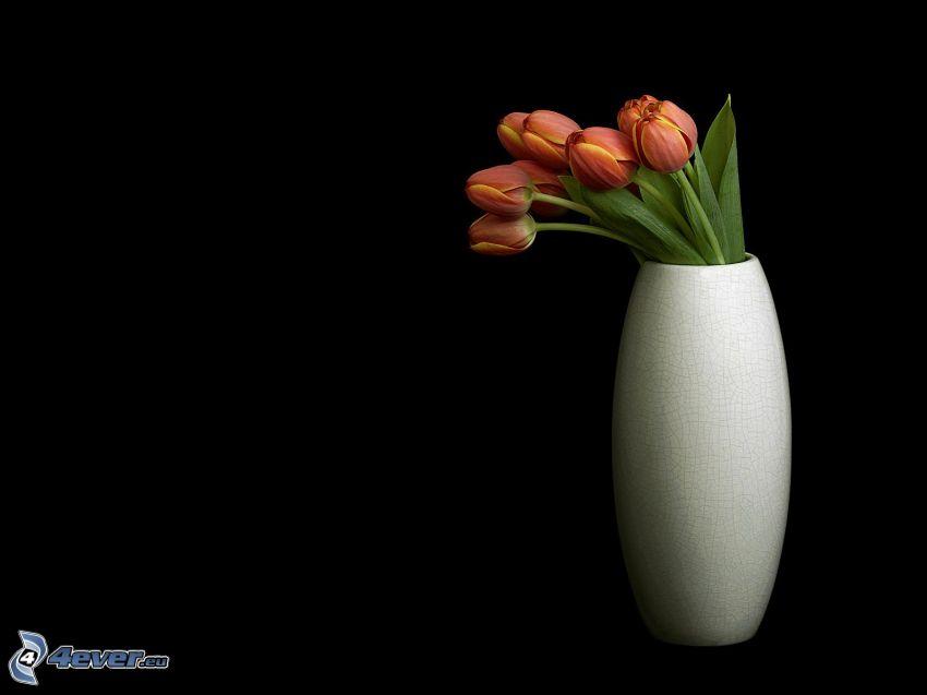 fiori in un vaso, tulipani