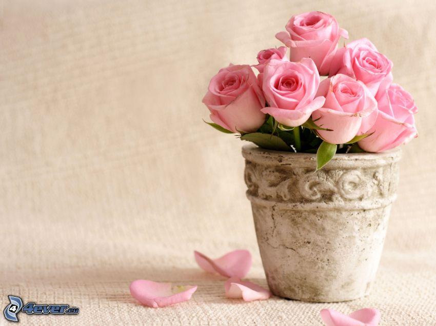 fiori rossi, vaso