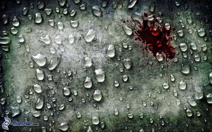 gocce d'acqua, sangue