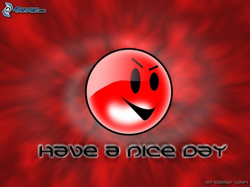have a nice day, faccina