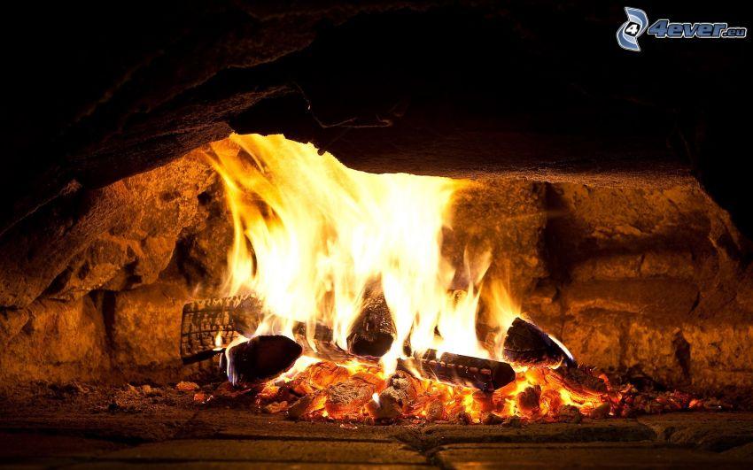 legno bruciante, fuoco, camino