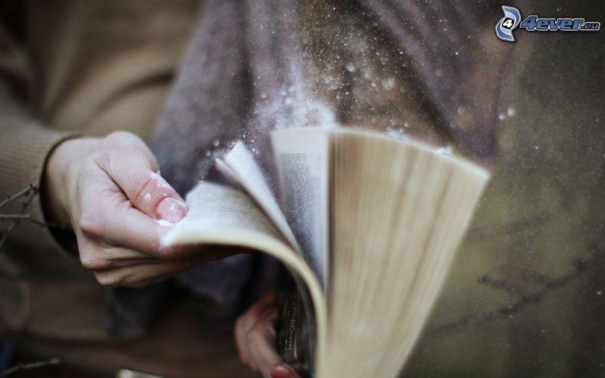 libro, polvere