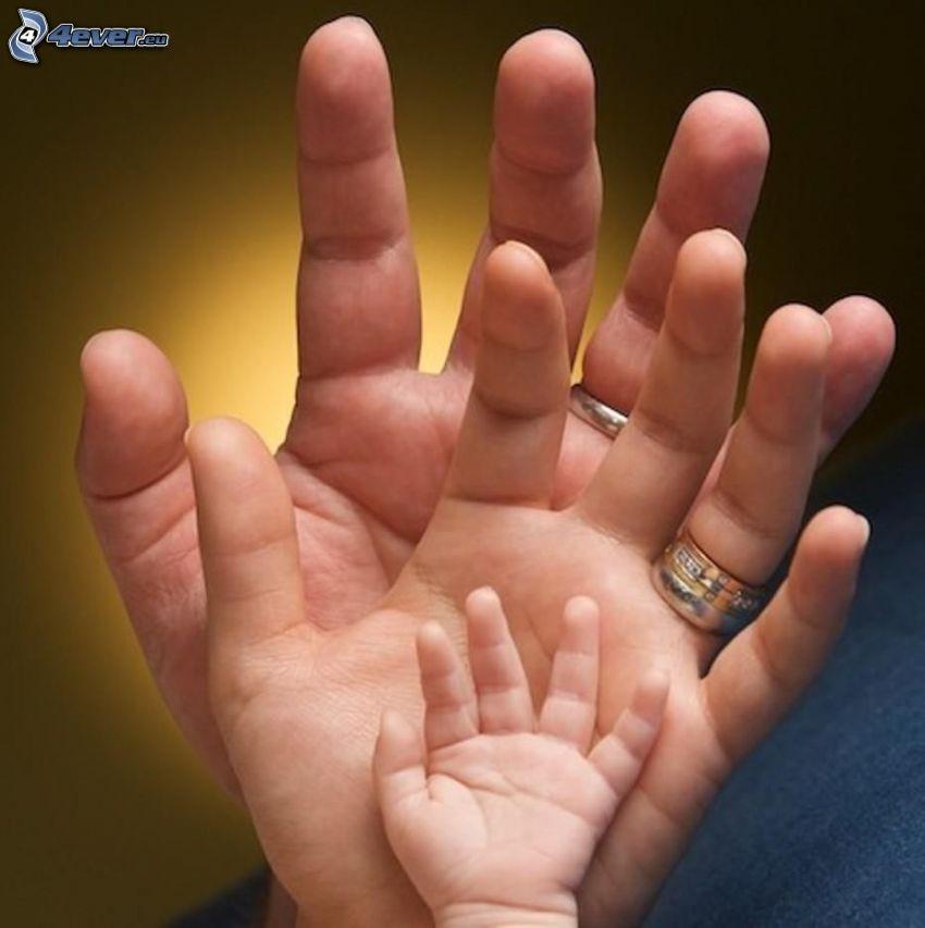 mani, famiglia