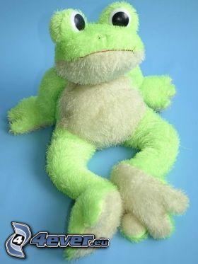 rana, peluche, verde