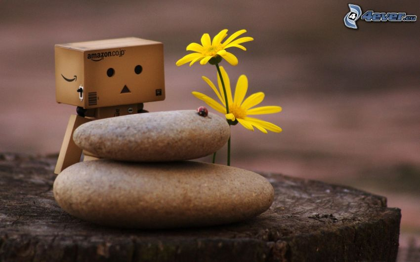 robot di carta, fiori, pietre
