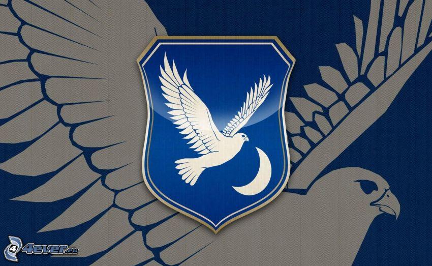 stemma, falcone