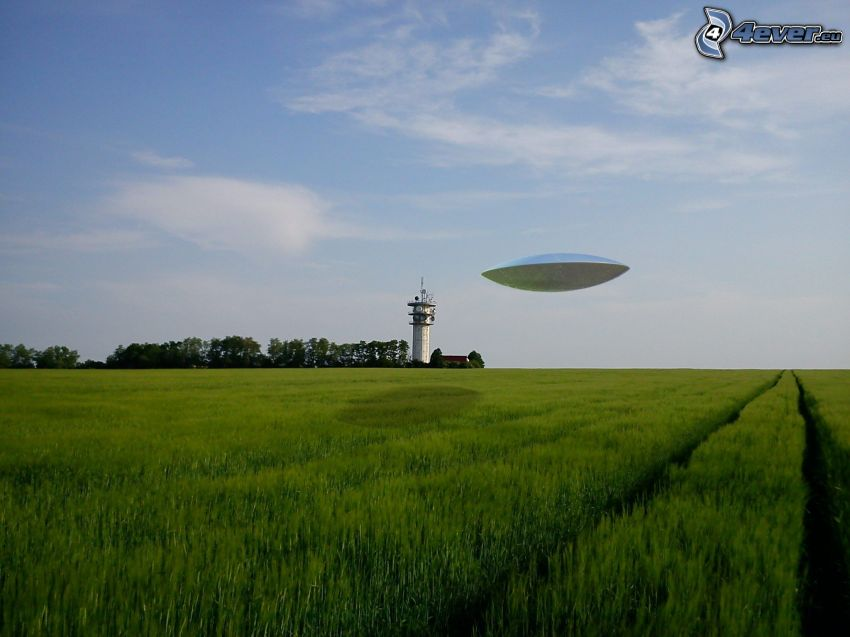 UFO, campo, prato, cielo, faro