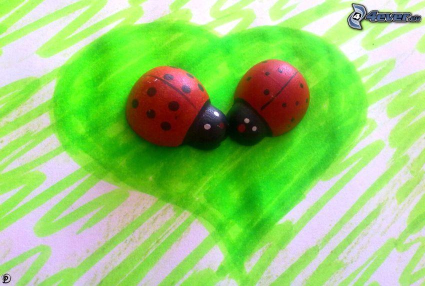 coccinelle, amore, cuore verde