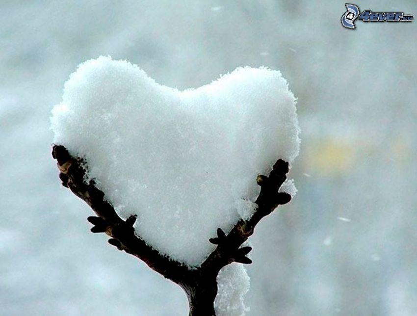 cuore, neve, ramoscello