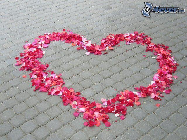 cuore di petali, marciapiede