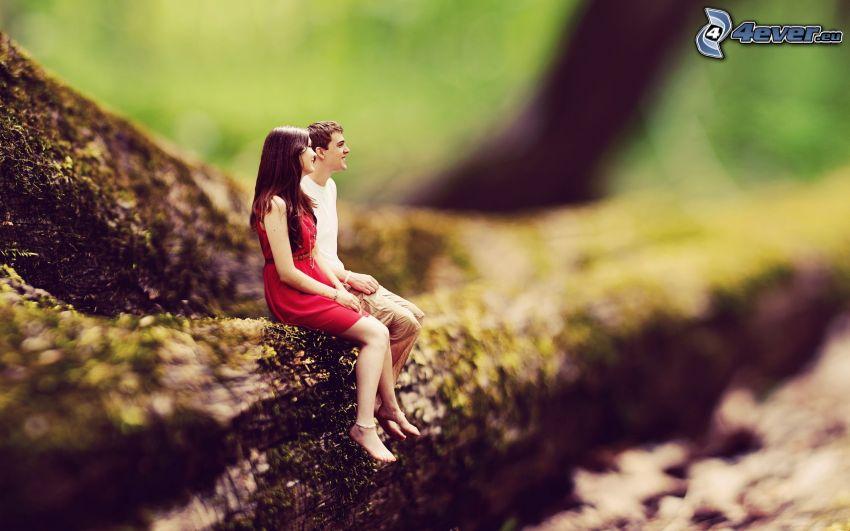 coppia, tronco, diorama