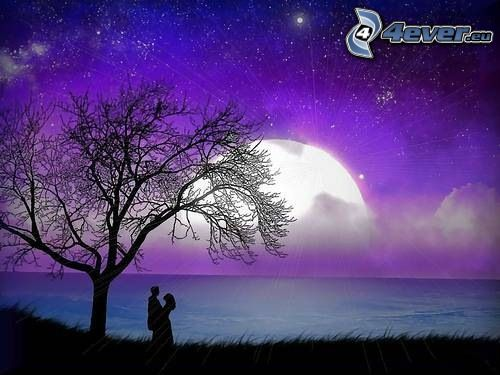 coppia sotto l'albero, luna sopra superficie d'acqua, costa, mare, cielo stellato