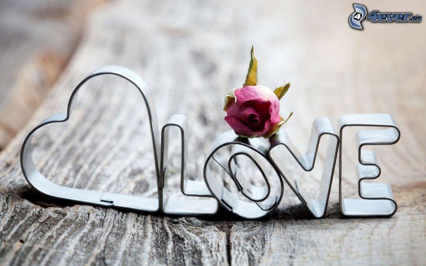 love, amore, rosa