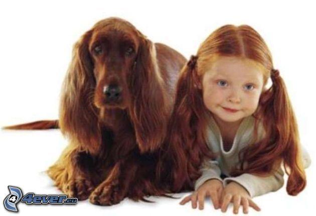 cane e suo padrone, Setter irlandese, ragazza rossa, bambino