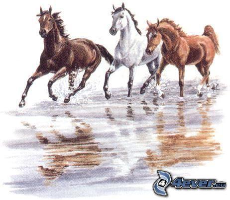 cavalli, cartone animato, arte, animali